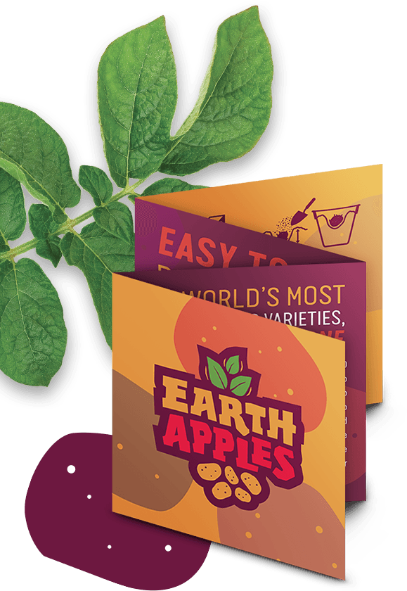 EarthApples brochure