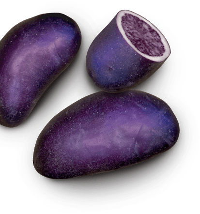 EarthApples Purple Magic